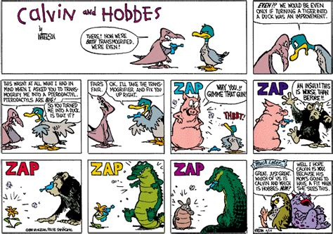 calvin and hobbes valentines day dailystrips for sunday march 29 2009