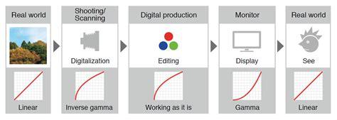 linear workflow eizo