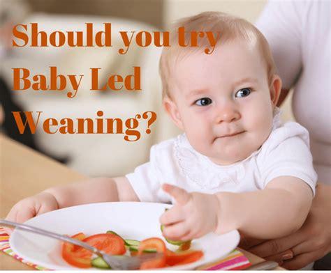 Feeding Weaning should you try baby led weaning feeding bytes