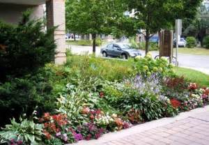 Ideas For Small Front Gardens Landscaping Front Garden Ideas Small