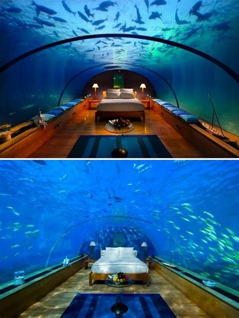 underwater bedroom in maldives dreaming of palm trees underwater hotel