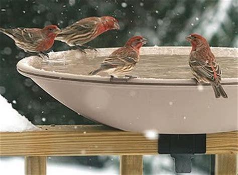 wild birds unlimited best heated bird bath