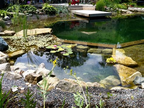 small swimming pool ideas  pictures hgtvs decorating