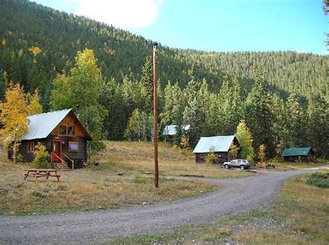 Pioneer Guest Cabins Crested Butte Co by Wildflowers In The Area Picture Of Pioneer Guest Cabins