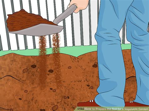 prepare soil for vegetable garden how to prepare the soil for a vegetable garden 8 steps