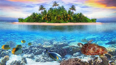 wallpaper 4k ultra hd 1366x768 underwater 4k ultra hd wallpaper 3840x2160