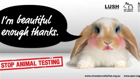 did l oreal completely change petition 183 l oreal let s get l oreal to stop animal testing 183 change org