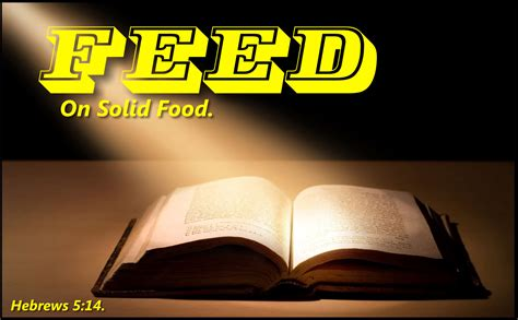 cooking for your food for your soul daily spirit and word