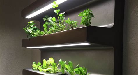 indoor shelving unit grows 21 vegetables at once springwise