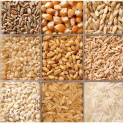 Grains food group images