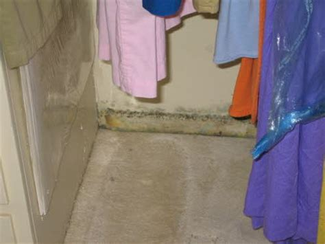 Mould In Wardrobe by Typical Mold Findings That May Cause Health Problems For