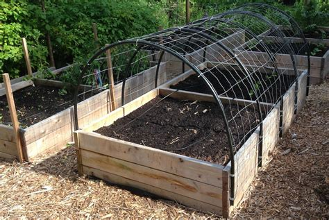 how to build a trellis diy garden trellis how to build a cucumber trellis for