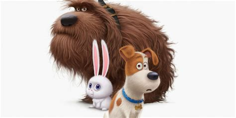 spin master  launching  secret life  pets stuffed