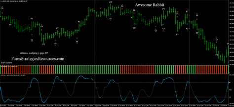awesome rabbit forex strategies forex resources forex trading  forex trading signals
