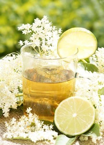 alimenti contro il raffreddore tisana al sambuco per il raffreddore alimenti per