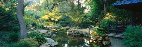 Descano Gardens by Look Maple At Descanso Gardens In La Canada Real