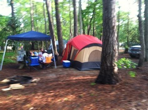 Myrtle Cgrounds With Cabins by Cing Area Picture Of Myrtle State Park Myrtle Tripadvisor