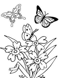 Erlina Butterfly flower page printable coloring sheets coloring