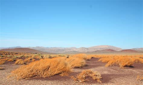 desert landscape by muttiniraq on deviantart