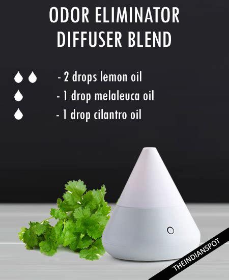 essential oils diffuser blends  indian spot