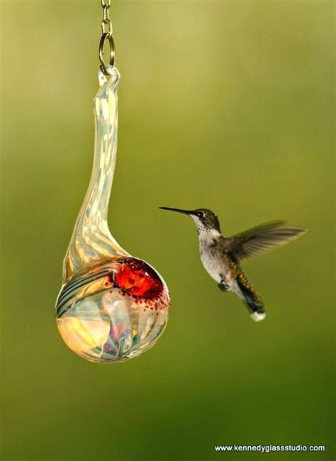 what is the mixture for hummingbird feeders insured by laura
