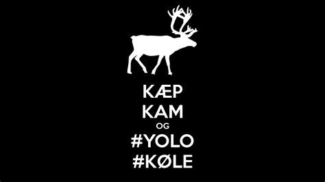 cool yolo wallpaper yolo wallpaper hd wallpapersafari