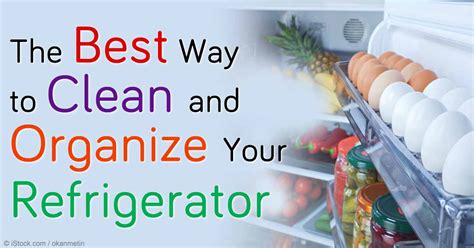 Best Way To Clean by Best Way To Clean And Organize Your Refrigerator