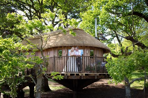 treehouse wedding venue west uk luxury treehouse opens at the deer park