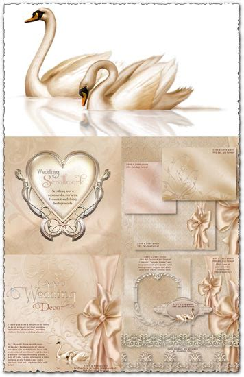 Wedding Background Frame Psd by Wedding Ornaments Frames And Backgrounds