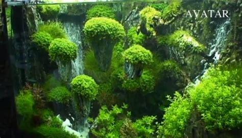 gaya design aquascape aquascape quot floating island quot pesona alam dalam ruang part