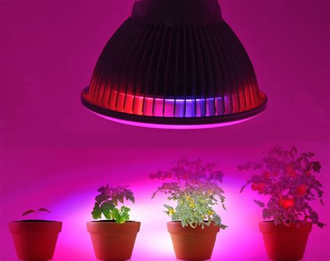 lights to grow indoor best artificial grow lights for indoor plants
