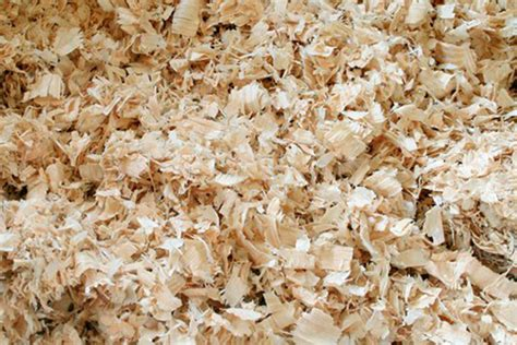 pine bedding suncoast pine shavings on purpose farm flavor
