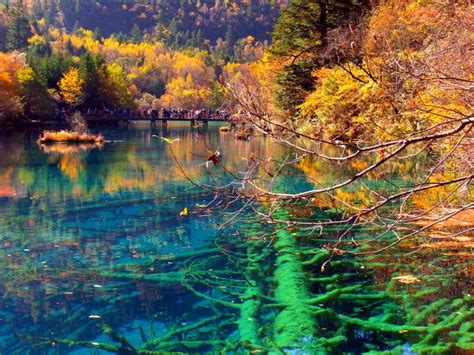 clearest lake in china facts sam s travel photos juizhaigou valley china s fairyland of