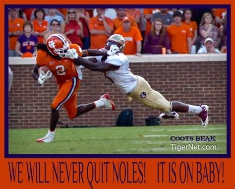 Clemson Memes - 19 best images about clemson tigers on pinterest husky