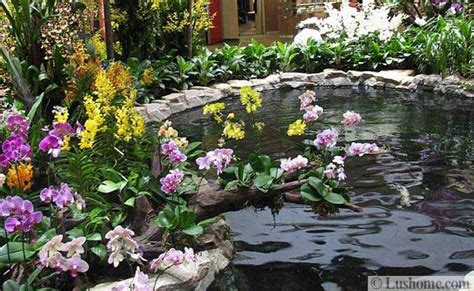 30 beautiful ideas for exotic garden design and backyard landscaping with orchids