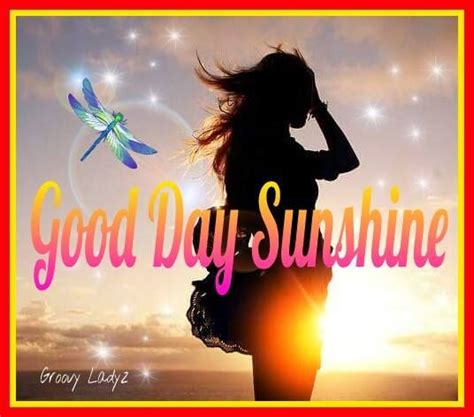 good day sunshine pictures   images
