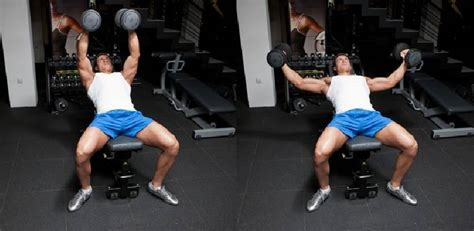 flat bench flyes image gallery incline dumbbell fly