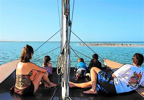 fan boat tours marco island private marco island boat tour reservations 280 480