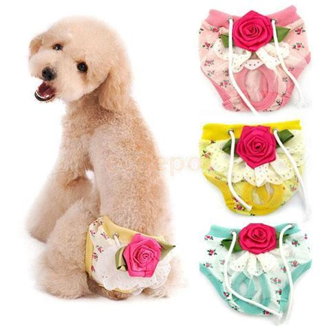 puppy period period diapers promotion shop for promotional period diapers on aliexpress