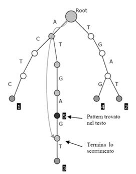 pattern matching using trie problema del pattern matching approssimato