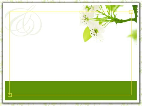 Free Ideas Invitation Card Templates Green Color Layout White Background Blank Invited Flower Card Background Templates 2