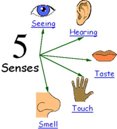 imagenes sensoriales en ingles 1 hearing o 237 do