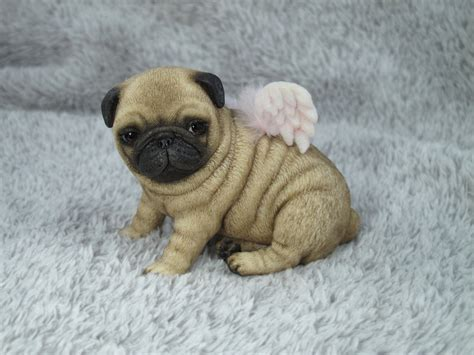 where can i buy a pug ooak puppy pug by rojo by fantasylilyan on deviantart