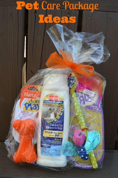 puppy package pet care package ideas for dogs and cats family focus