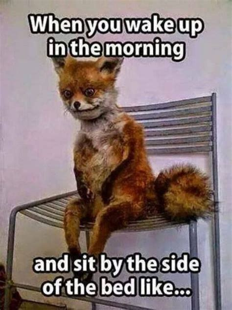i up meme morning memes morning images