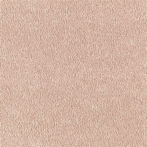 home decorators collection carpet sle velocity i
