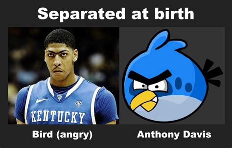 Anthony Davis Meme - ncaa basketball chionship game open thread mgoblog