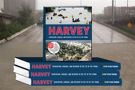 surviving hurricane september 18 2017 books hurricanes the tribune