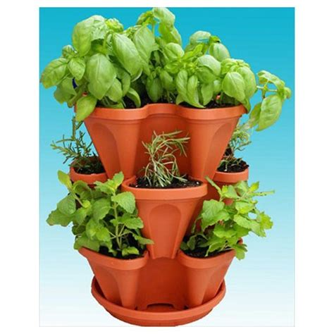 indoor edible gardens herb planters apartment therapy indoor edible gardens herb planters