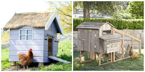 backyard chicken coops for sale backyard chicken coops cool chicken coops for sale